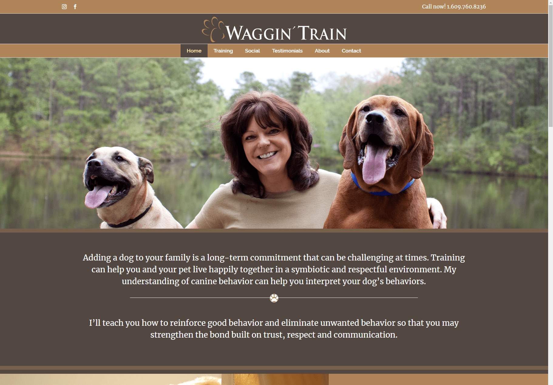 Waggin Train